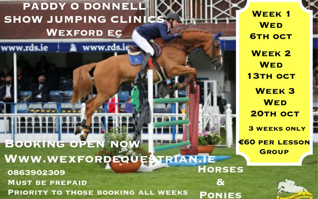 Paddy O Donnell Show Jumping  Training